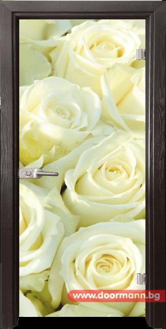 Стъклена врата модел Print 13-6 - Венге